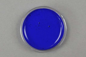 Kremer Color Paste - Ultramarine Blue