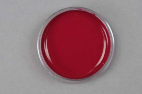 Kremer Color Paste - Quindo® Red