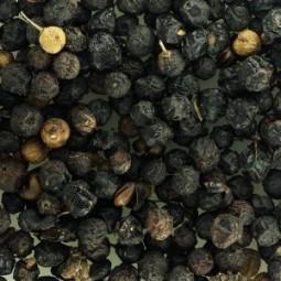 Ripe Buckthorn Berries
