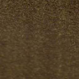 Raw Umber in Linseed Oil
