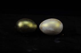 IRIODIN® 307 STAR GOLD, Colibri, fine