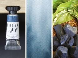 Lutea Plant-Watercolor, Blue
